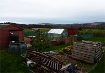 Woodend Barn allotments
